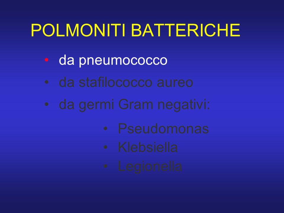 POLMONITI BATTERICHE da pneumococco da stafilococco aureo