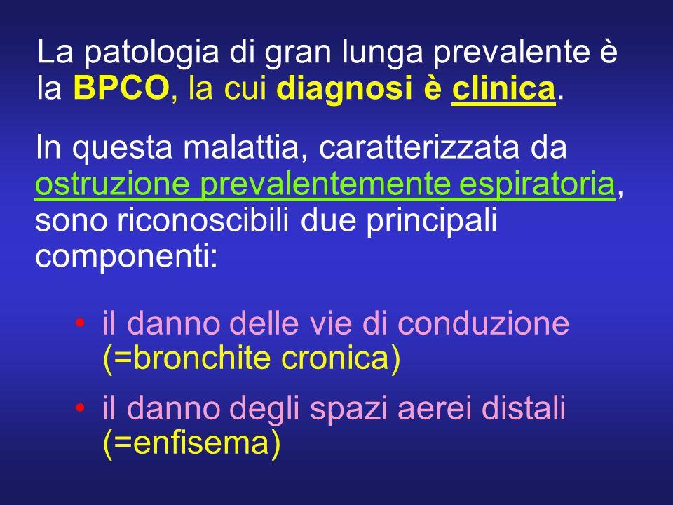 La patologia di gran lunga prevalente è la BPCO, la cui diagnosi è clinica.