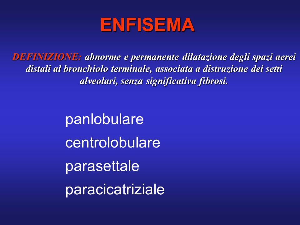 ENFISEMA panlobulare centrolobulare parasettale paracicatriziale
