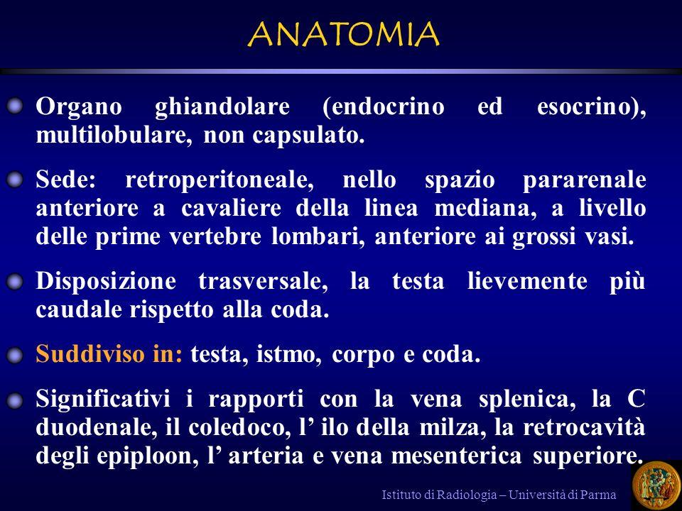 ANATOMIA Organo ghiandolare (endocrino ed esocrino), multilobulare, non capsulato.