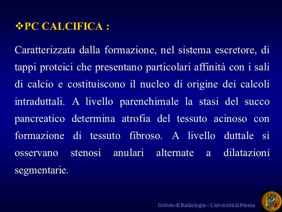 PC CALCIFICA :
