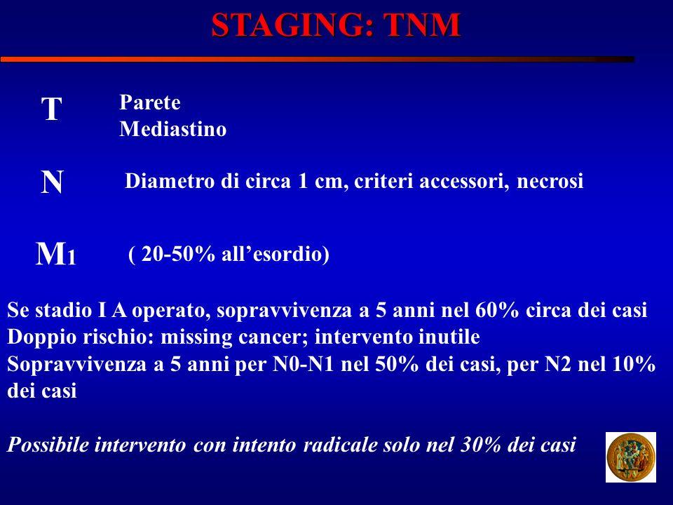 STAGING: TNM T N M1 Parete Mediastino