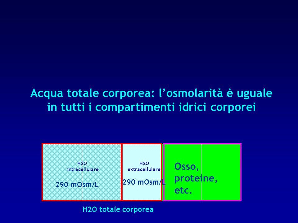 Acqua totale corporea: l'osmolarità è uguale