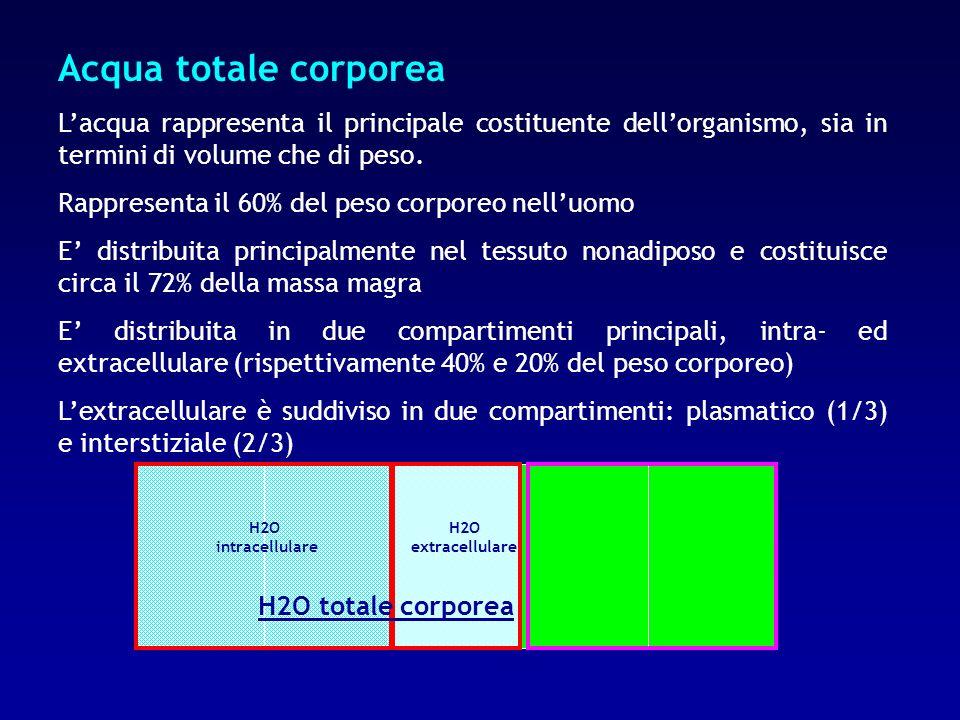 Acqua totale corporea L'acqua rappresenta il principale costituente dell'organismo, sia in termini di volume che di peso.