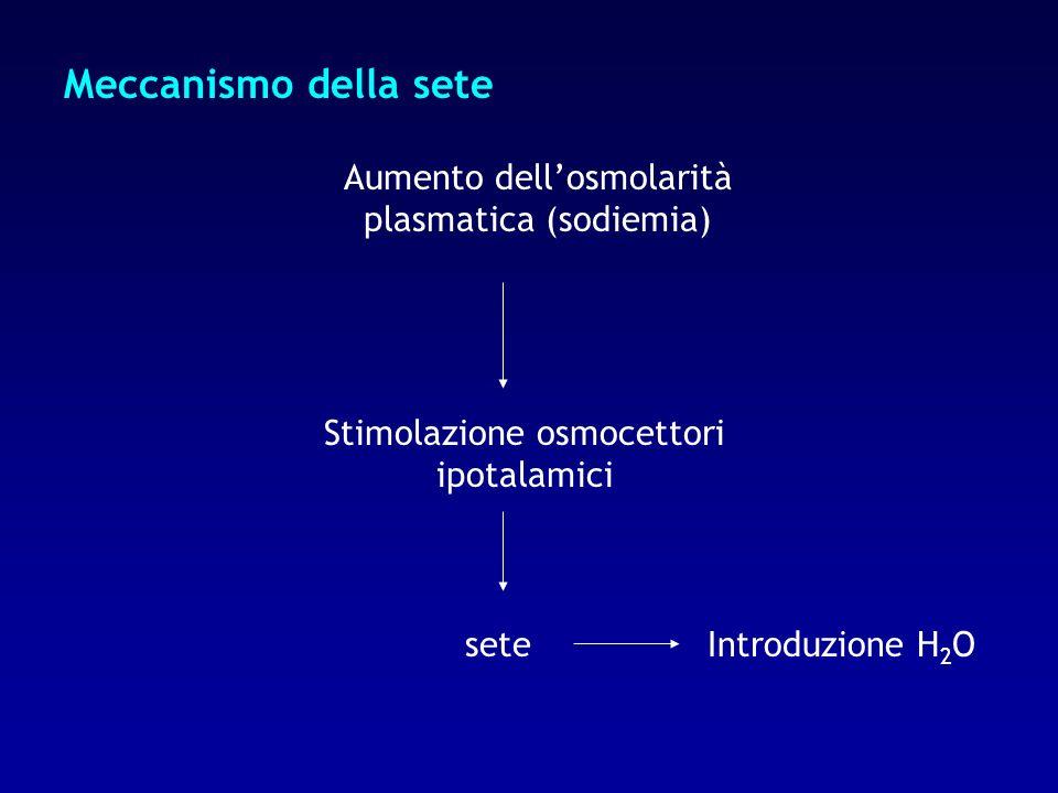 Meccanismo della sete Aumento dell'osmolarità plasmatica (sodiemia)
