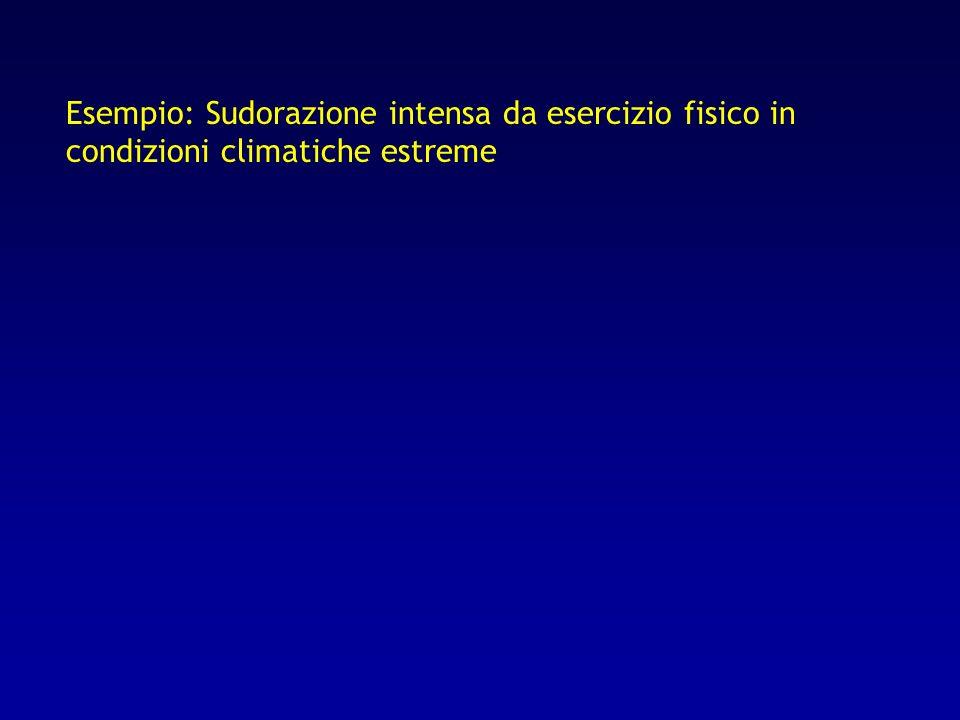 Esempio: Sudorazione intensa da esercizio fisico in condizioni climatiche estreme