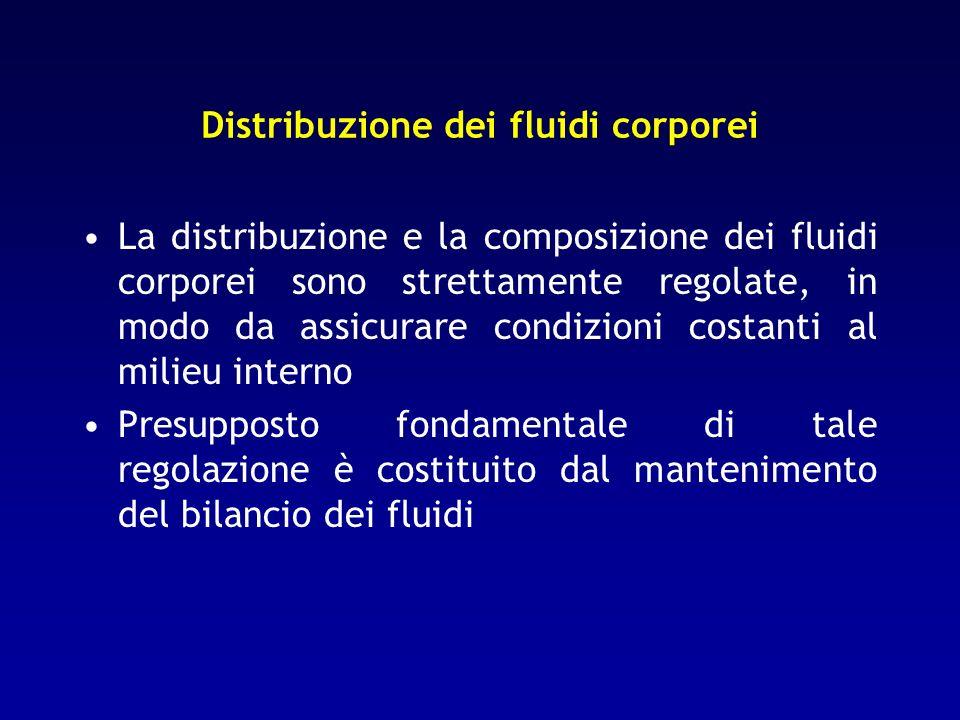 Distribuzione dei fluidi corporei