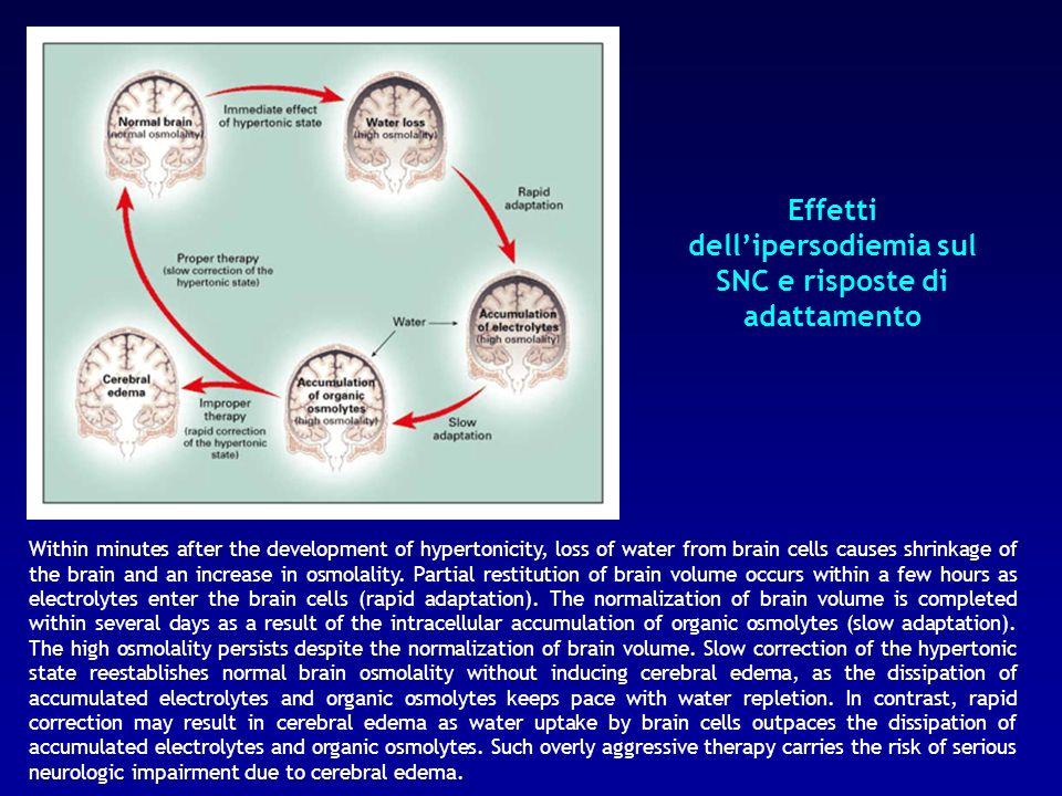 Effetti dell'ipersodiemia sul SNC e risposte di adattamento