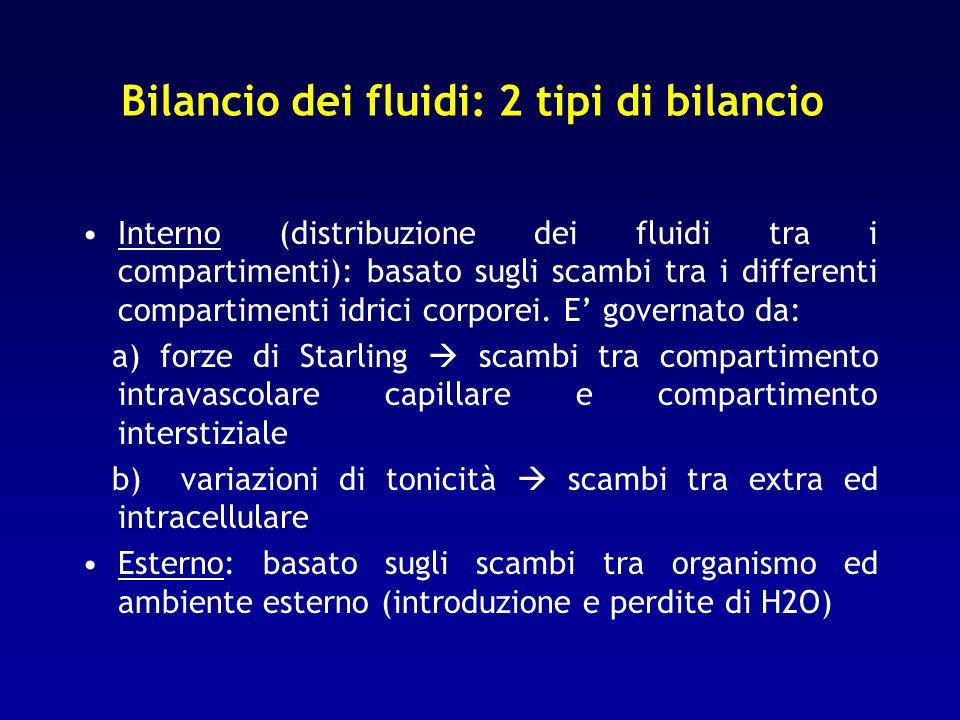 Bilancio dei fluidi: 2 tipi di bilancio