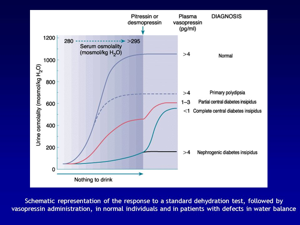 Schematic representation of the response to a standard dehydration test, followed by vasopressin administration, in normal individuals and in patients with defects in water balance