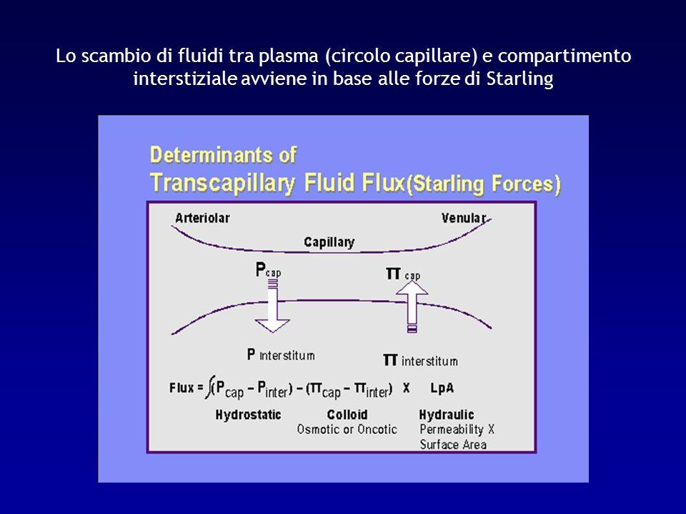 Lo scambio di fluidi tra plasma (circolo capillare) e compartimento interstiziale avviene in base alle forze di Starling
