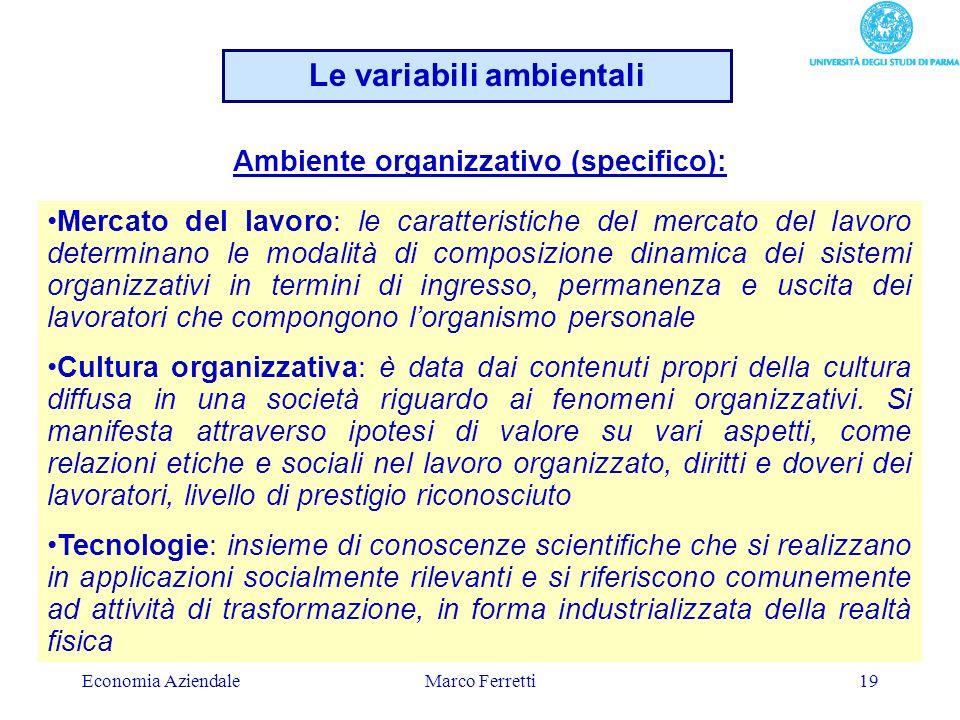 Le variabili ambientali Ambiente organizzativo (specifico):