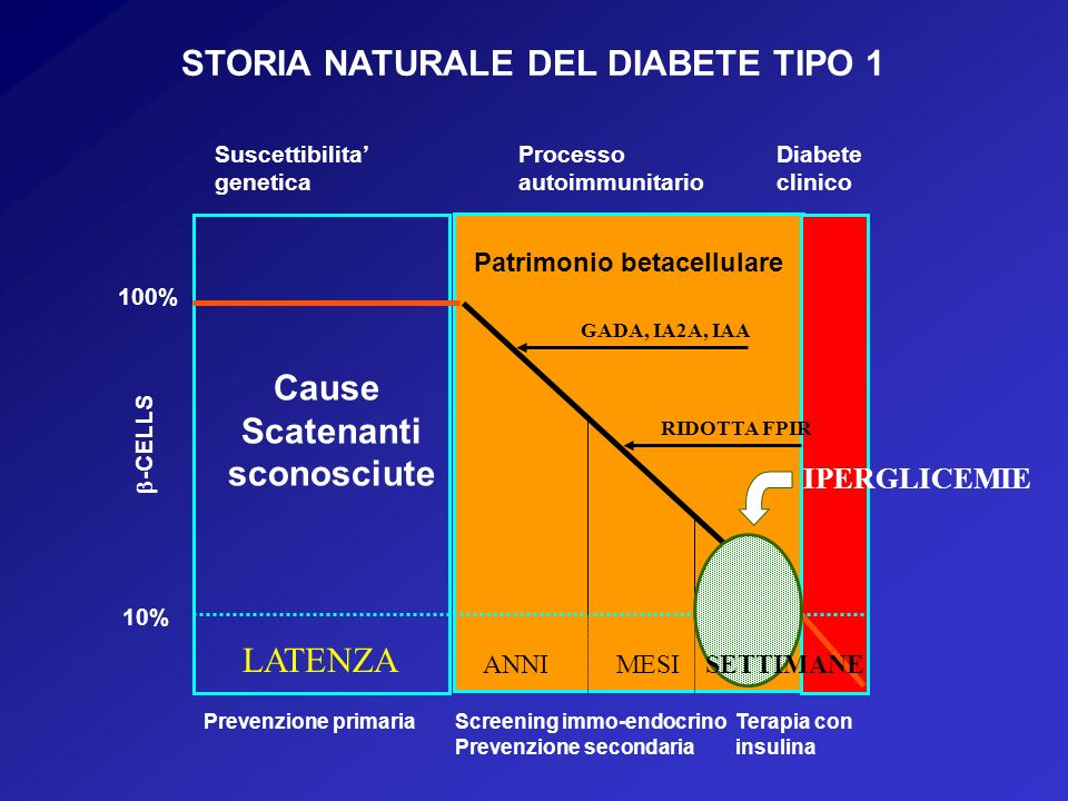 STORIA NATURALE DEL DIABETE TIPO 1 Patrimonio betacellulare