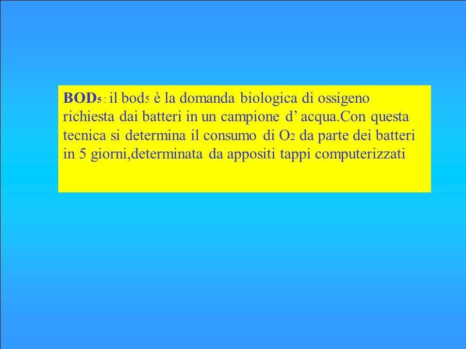 BOD5 : il bod5 è la domanda biologica di ossigeno richiesta dai batteri in un campione d' acqua.Con questa tecnica si determina il consumo di O2 da parte dei batteri in 5 giorni,determinata da appositi tappi computerizzati