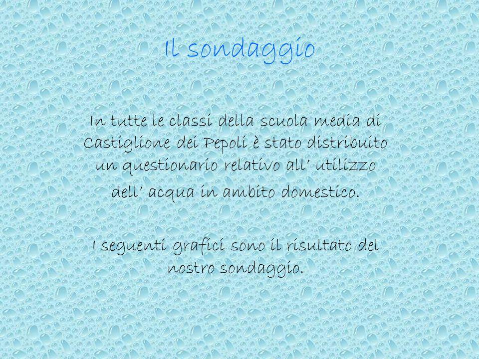 Il sondaggioIn tutte le classi della scuola media di Castiglione dei Pepoli è stato distribuito un questionario relativo all' utilizzo.