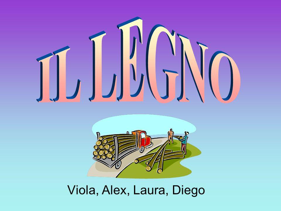 IL LEGNO Viola, Alex, Laura, Diego