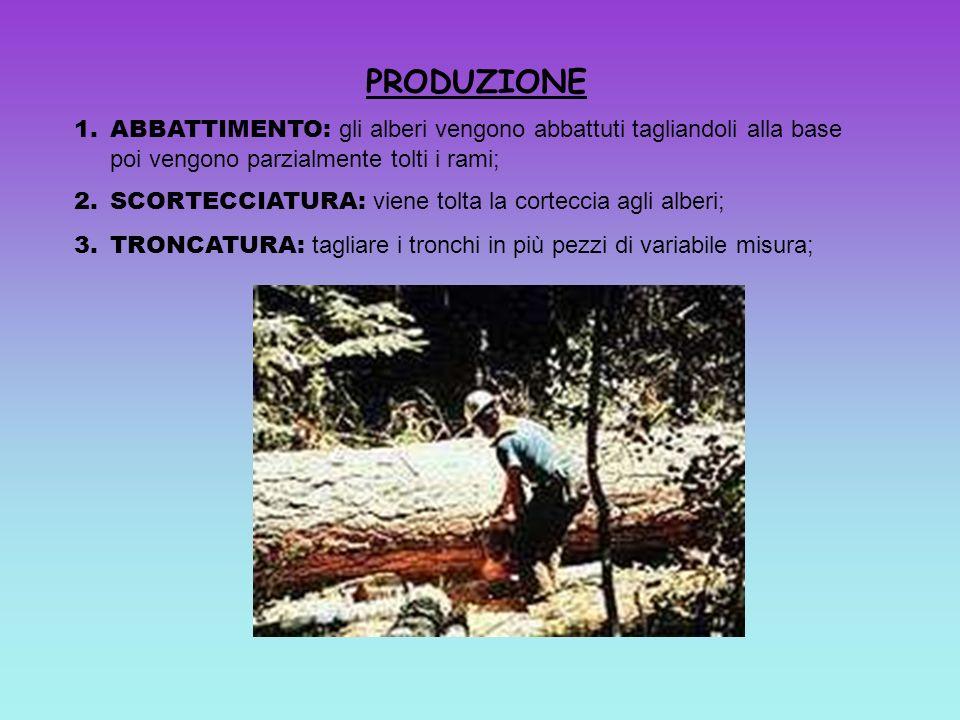 PRODUZIONE ABBATTIMENTO: gli alberi vengono abbattuti tagliandoli alla base poi vengono parzialmente tolti i rami;
