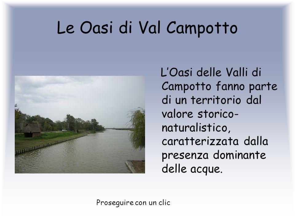 Le Oasi di Val Campotto
