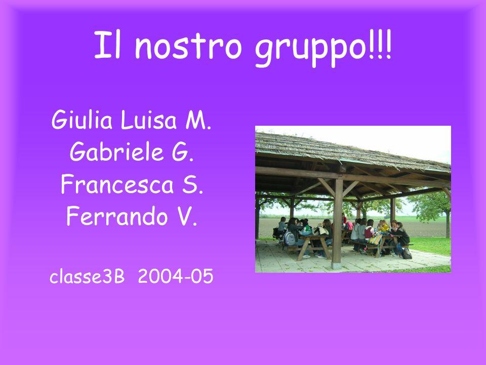 Il nostro gruppo!!! Giulia Luisa M. Gabriele G. Francesca S.