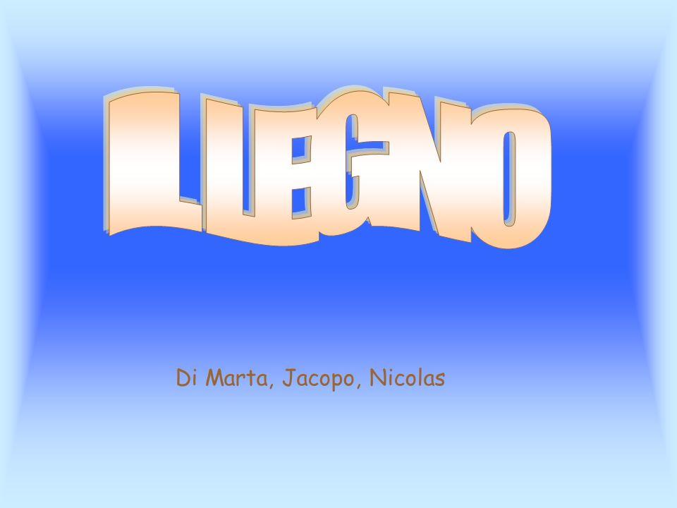 IL LEGNO Di Marta, Jacopo, Nicolas