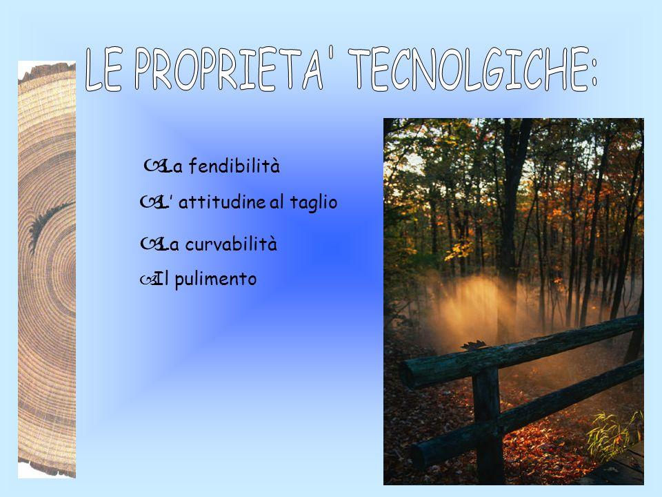 LE PROPRIETA TECNOLGICHE:
