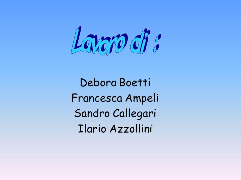 Lavoro di : Debora Boetti Francesca Ampeli Sandro Callegari