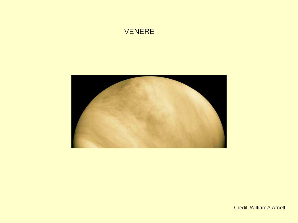 VENERE Credit: William A.Arnett