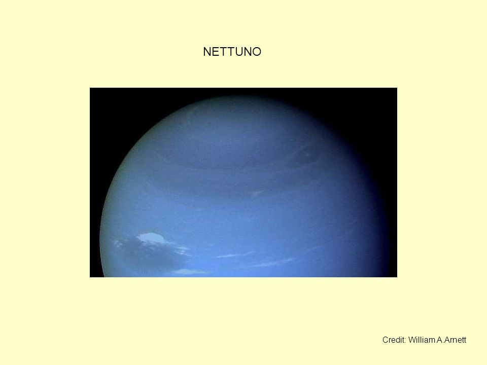 NETTUNO Credit: William A.Arnett
