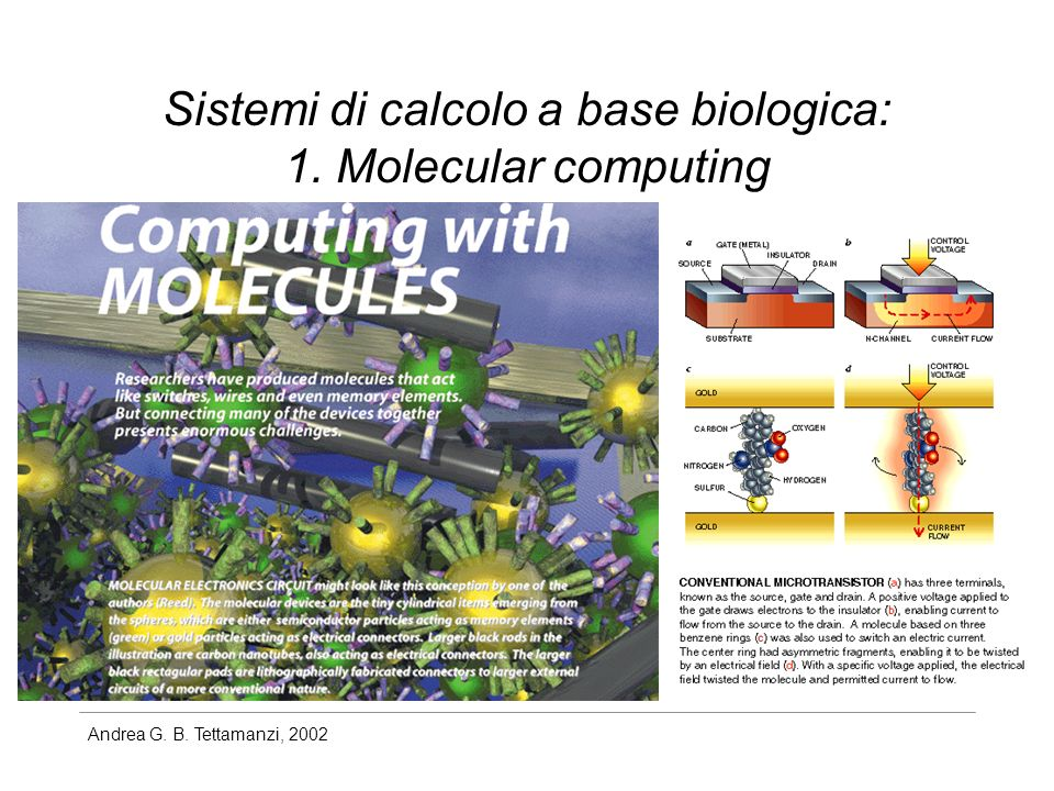 Sistemi di calcolo a base biologica: 1. Molecular computing