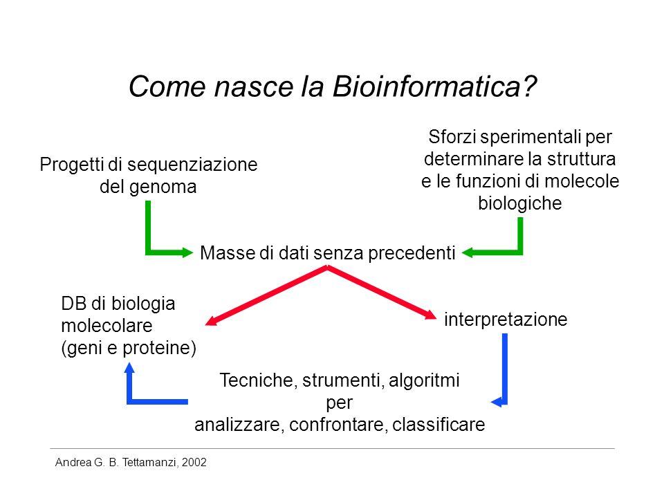 Come nasce la Bioinformatica