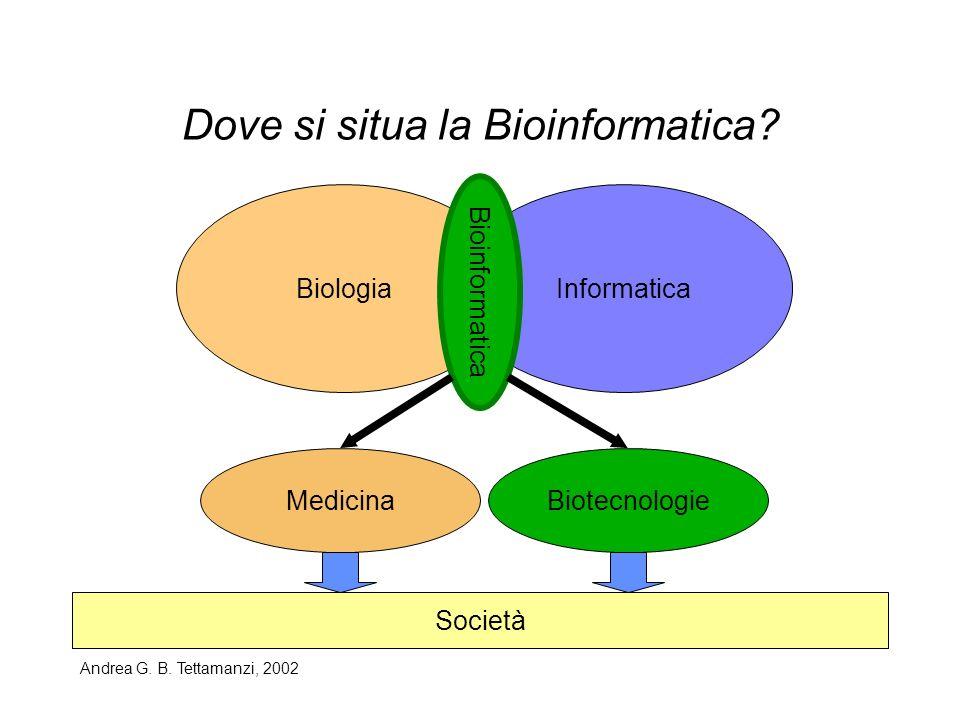 Dove si situa la Bioinformatica