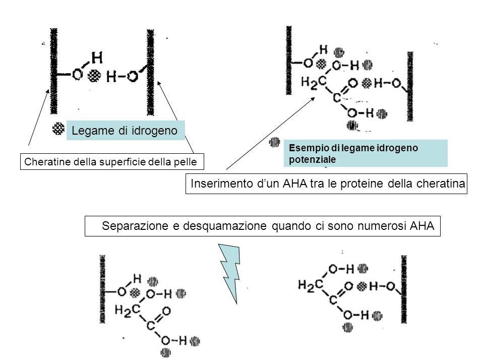 Inserimento d'un AHA tra le proteine della cheratina