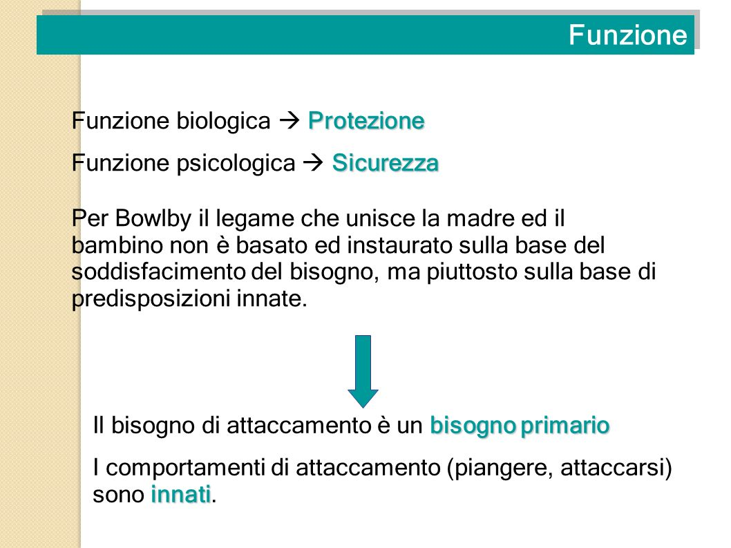 Funzione Funzione biologica  Protezione