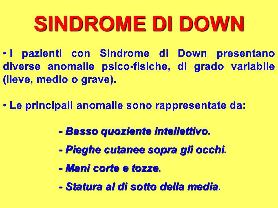 SINDROME DI DOWN I pazienti con Sindrome di Down presentano diverse anomalie psico-fisiche, di grado variabile (lieve, medio o grave).