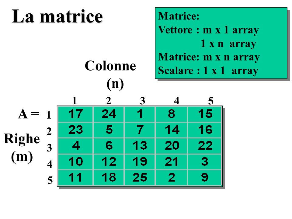 La matrice Colonne (n) A = Righe (m) Matrice: Vettore : m x 1 array