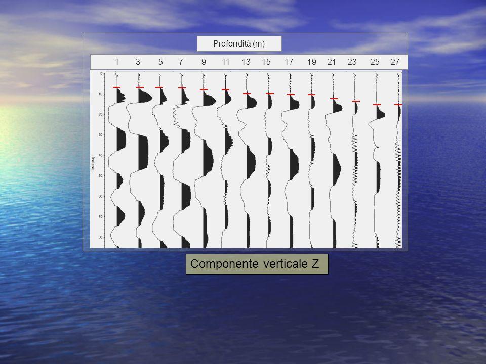 Componente verticale Z
