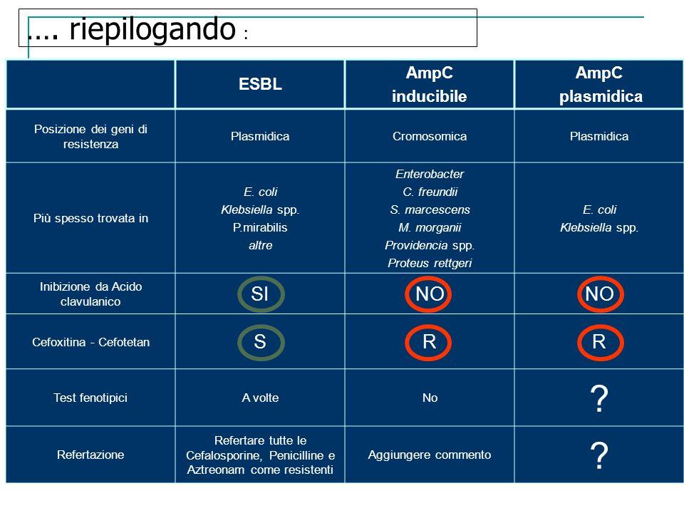 …. riepilogando : SI NO S R ESBL AmpC inducibile plasmidica