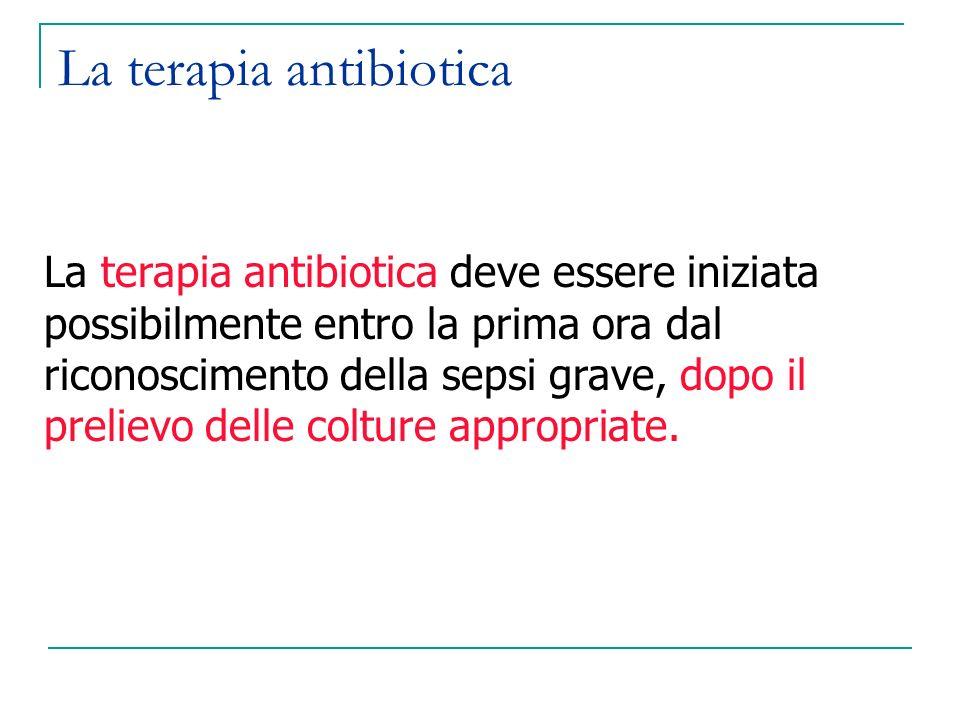 La terapia antibiotica