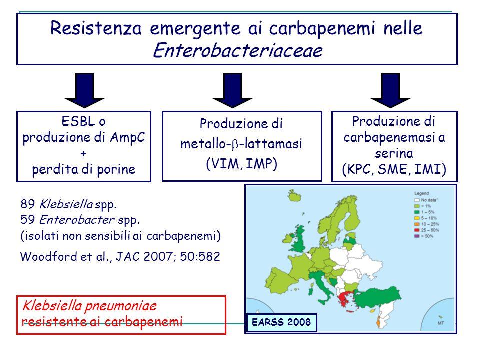 Resistenza emergente ai carbapenemi nelle Enterobacteriaceae