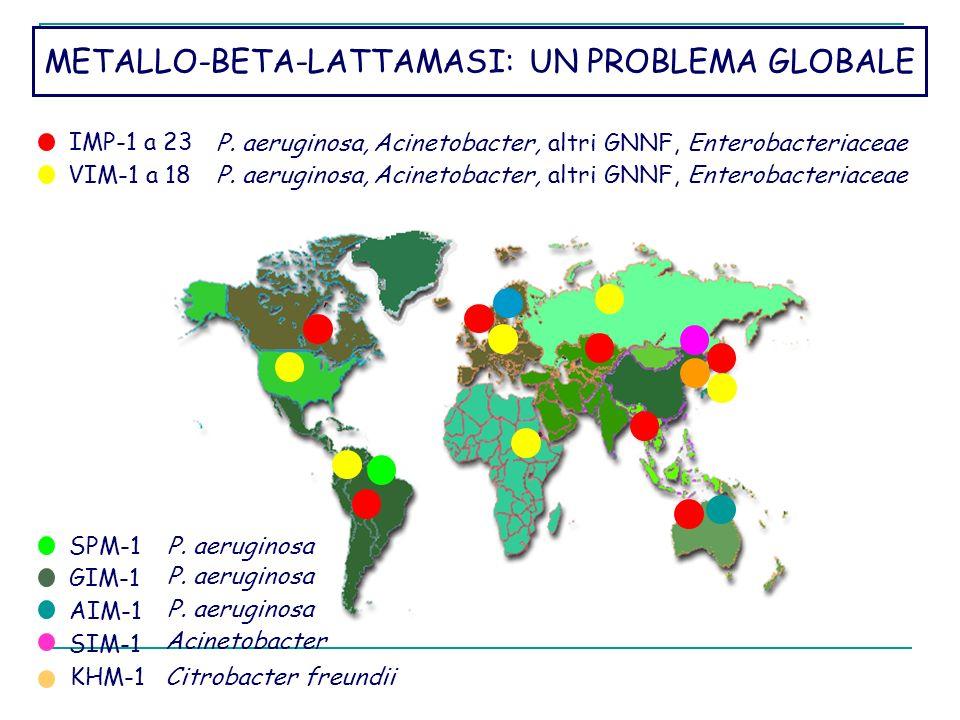 METALLO-BETA-LATTAMASI: UN PROBLEMA GLOBALE