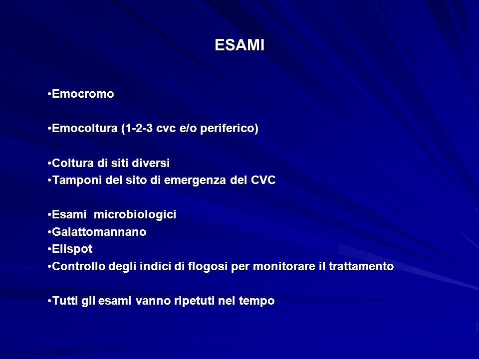 ESAMI Emocromo Emocoltura (1-2-3 cvc e/o periferico)
