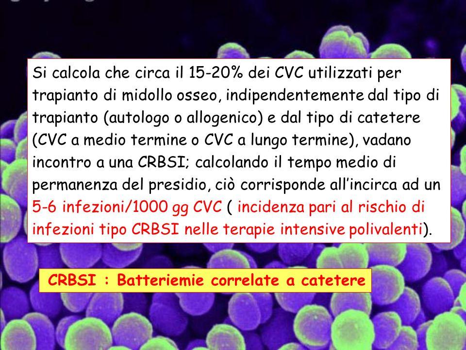 Si calcola che circa il 15-20% dei CVC utilizzati per trapianto di midollo osseo, indipendentemente dal tipo di trapianto (autologo o allogenico) e dal tipo di catetere (CVC a medio termine o CVC a lungo termine), vadano incontro a una CRBSI; calcolando il tempo medio di permanenza del presidio, ciò corrisponde all'incirca ad un 5-6 infezioni/1000 gg CVC ( incidenza pari al rischio di infezioni tipo CRBSI nelle terapie intensive polivalenti).