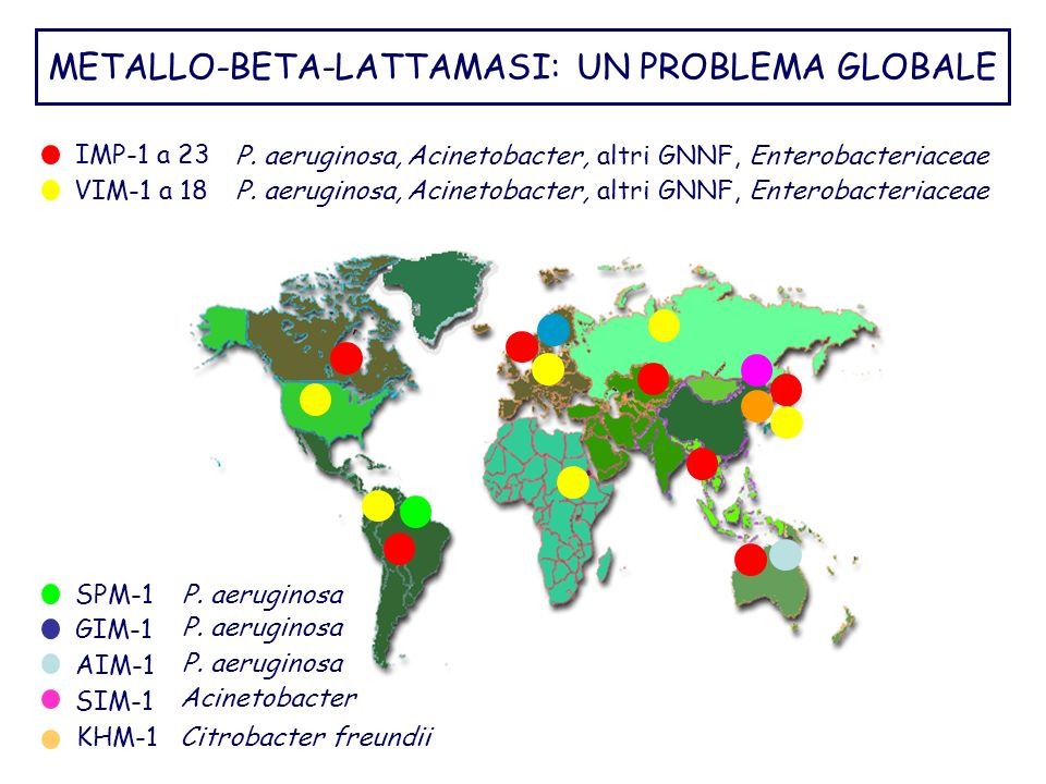 METALLO-BETA-LATTAMASI: UN PROBLEMA GLOBALE