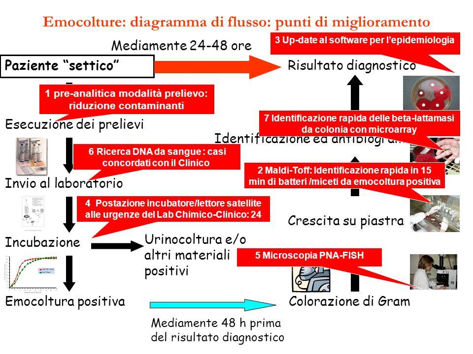 Emocolture: diagramma di flusso: punti di miglioramento