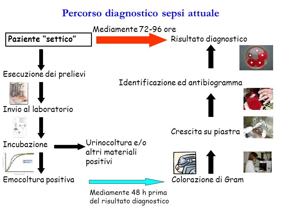 Percorso diagnostico sepsi attuale