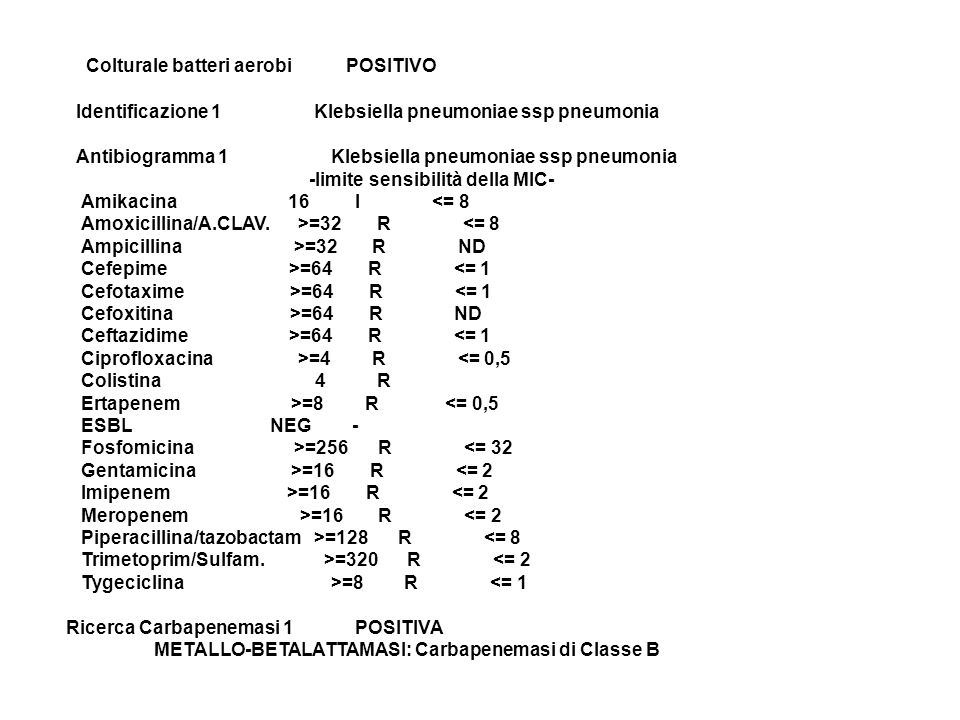 Colturale batteri aerobi POSITIVO Identificazione 1 Klebsiella pneumoniae ssp pneumonia Antibiogramma 1 Klebsiella pneumoniae ssp pneumonia -limite sensibilità della MIC- Amikacina 16 I <= 8 Amoxicillina/A.CLAV. >=32 R <= 8 Ampicillina >=32 R ND Cefepime >=64 R <= 1 Cefotaxime >=64 R <= 1 Cefoxitina >=64 R ND Ceftazidime >=64 R <= 1 Ciprofloxacina >=4 R <= 0,5 Colistina 4 R Ertapenem >=8 R <= 0,5 ESBL NEG - Fosfomicina >=256 R <= 32 Gentamicina >=16 R <= 2 Imipenem >=16 R <= 2 Meropenem >=16 R <= 2 Piperacillina/tazobactam >=128 R <= 8 Trimetoprim/Sulfam. >=320 R <= 2 Tygeciclina >=8 R <= 1