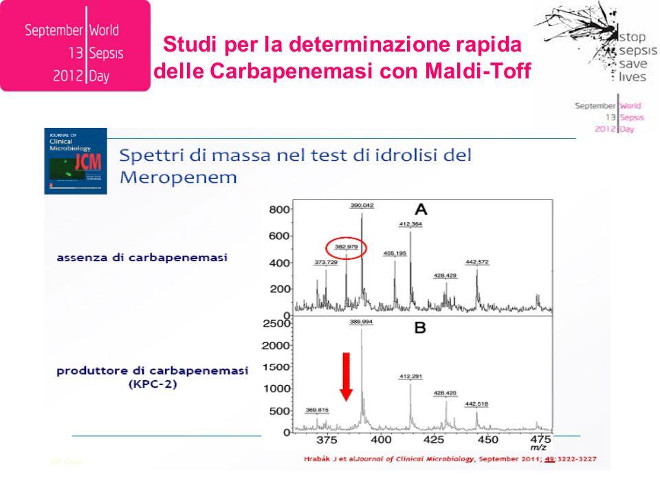 Studi per la determinazione rapida delle Carbapenemasi con Maldi-Toff
