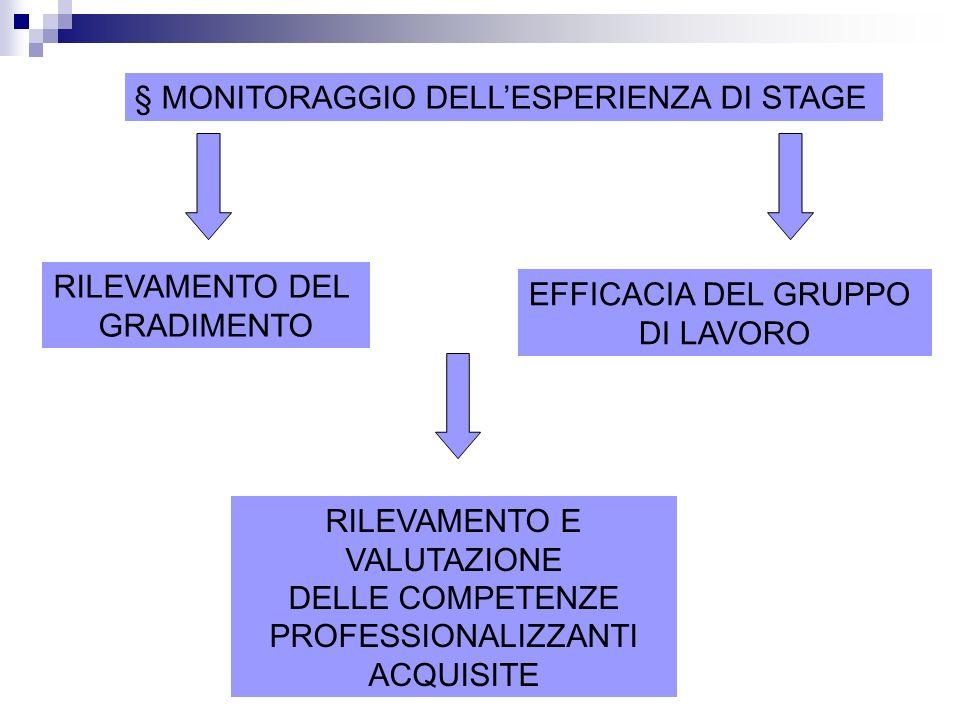 § MONITORAGGIO DELL'ESPERIENZA DI STAGE