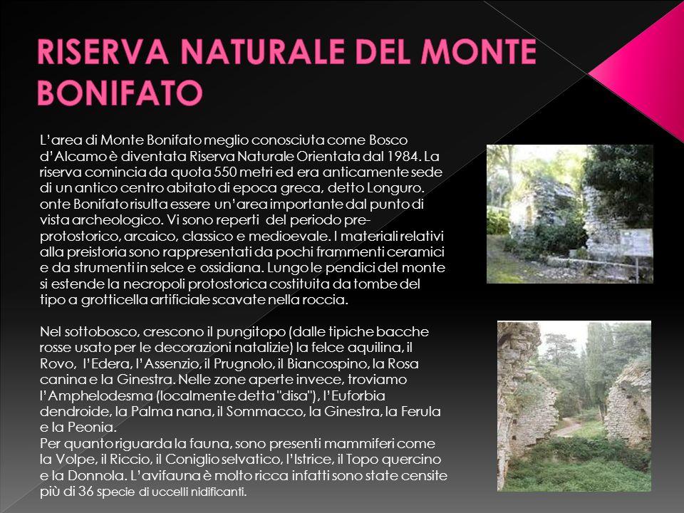 RISERVA NATURALE DEL MONTE BONIFATO