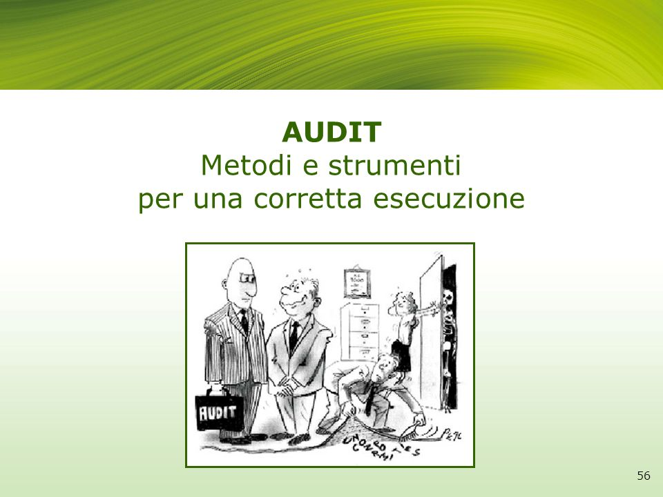 AUDIT Metodi e strumenti per una corretta esecuzione
